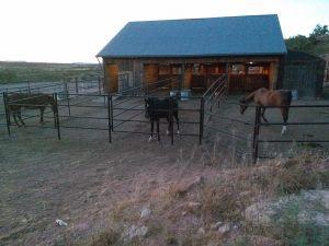 horse-barn-stalls-night