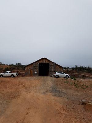 horse-boarding-barn